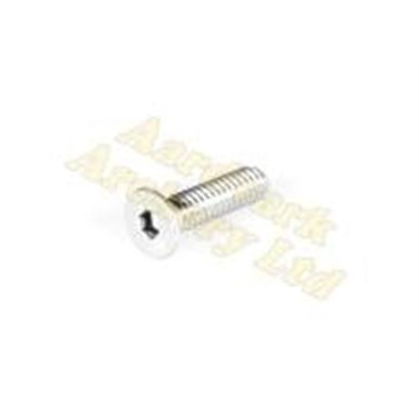 Ard Blade Weight Screw 1/4