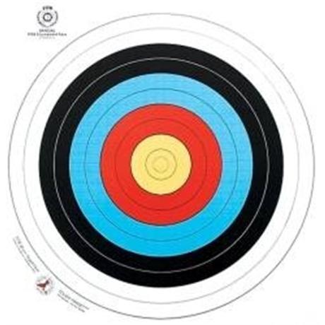 Arrowhead Target Face - 60cm Image 1