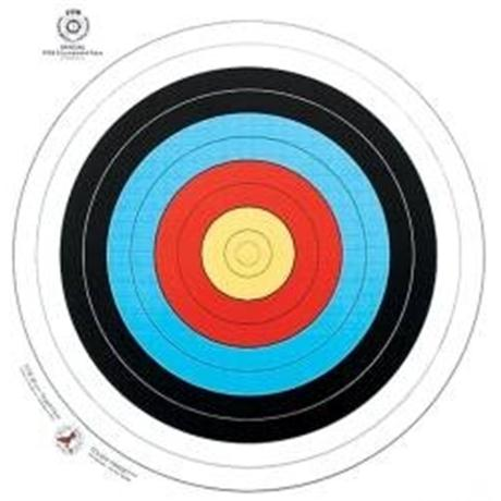 Arrowhead Target Face - 122cm Image 1