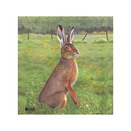 JVD Animal Target Face - Hare thumbnail