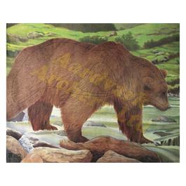 JVD Animal Target Face - Bear thumbnail