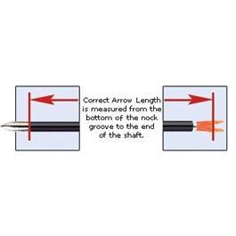 Jazz Arrows Nocked & Piled [x12] Thumbnail Image 3