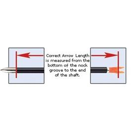 A/C/E Arrows Nocked & Piled [x12] Thumbnail Image 4