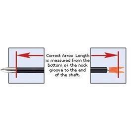 X23 Arrows Nocked & Piled x8 Thumbnail Image 3
