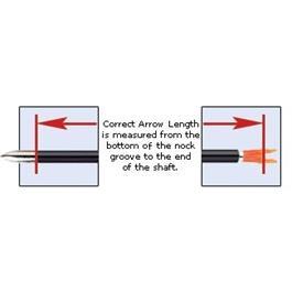 A/C/G Arrows FB - Eli-Vanes [x12] Thumbnail Image 5