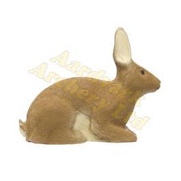 SRT Target 3D - Rabbit thumbnail